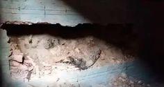 Jovem achada concretada em parede lutava contra as drogas diz mãe: ift.tt/2dQpa1r