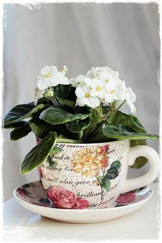 ideas y trucos para decorar la casa complementos decorativos : Tazas de Porcelana, Usos Originales
