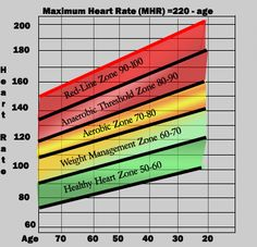 normal heart rate chart by age: Heart rate exercise chart the numbers next to your age group