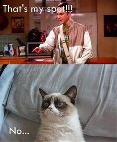 Funny Big Bang Theory Pictures – 35 Pics