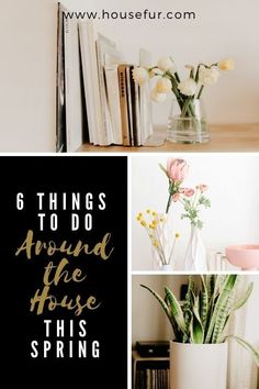 Springtime is the perfect time to show your home some TLC so what are you waiting for? Time to get busy. Vegetable Garden For Beginners, Gardening For Beginners, Gardening Tips, Interior Inspiration, Design Inspiration, House Plant Care, Spring Home, Houseplants, Indoor Plants