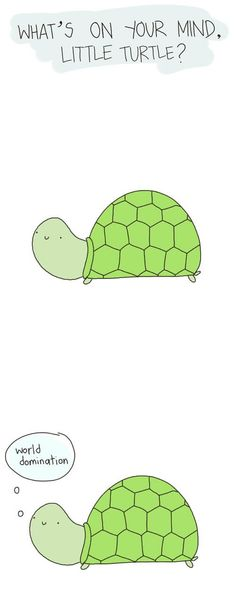 What is on your mind little turtle?