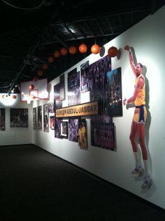Skyhook basketball shot installation