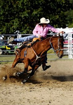 Cowgirl Rodeo Horse