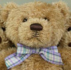 Cleft stuffed bears - Precious