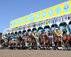 Del Mar Horse Racing Opening Day Jul 18th.  Hope to see you there.