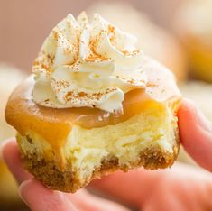 Mini Cheesecakes with caramel sauce are the easiest dessert but look so fancy for Thanksgiving or Christmas! There's a special ingredient in this mini cheesecakes recipe that creates the best flavor and texture! - April 27 2019 at Mini Cheesecake Recipes, Mini Desserts, Easy Desserts, Churro Cheesecake, Lemon Cheesecake, Caramel Cheesecake Bites, Mini Cheesecake Cupcakes, Rainbow Cheesecake, Plain Cheesecake