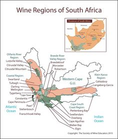Wine Regions of South Africa #wine #wineeducation