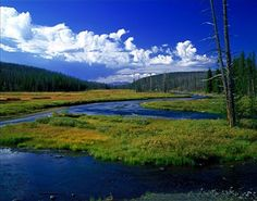 Yellowstone on Lewis River, Wyoming