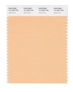 Pantone Smart Swatch 13-1020 Apricot Ice Light Orange, Orange Color, Peach Fuzz, Fashion Colours, Pantone Color, Spring Colors, Brown And Grey, Light In The Dark, Swatch
