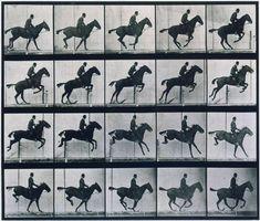 La décomposition du mouvement | L'histoire par l'image. Chronophotographie d'Eadweard Muybridge. J'ai choisi cette photo car à cette époque, on se posait beaucoup de questions sur la décomposition du mouvement, mais surtout, on se demandait si dans le galop le cheval avait un moment où il était complètement en l'air et cette photo a pu le prouver tout en étant nouvelle.