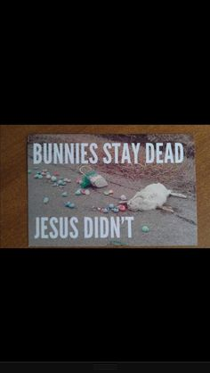 Bunny joke that somehow makes me laugh. Now you know how awful my humor is