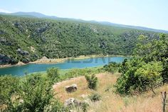 Zrmanja river near Muskovici, Croatia