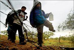 El mexicanos seria perezosos. El mexicanos no trabajaría duro.