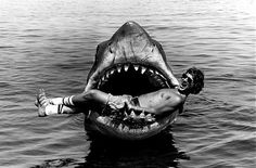 Great photo of Steven Spielberg in the jaws of JAWS