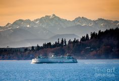 State Ferry On Puget Sound And The Olympic Mountains, Washington State
