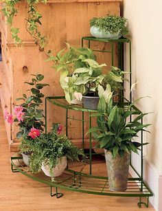 Quarter-Round Plant Terrace - LOVE this - for inside or out! $64.95