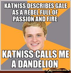 Katniss describes gale as a rebel full of passion and fire / Katniss calls me a dandelion