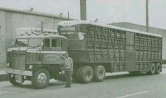 Antique Trucks, Vintage Trucks, Vintage Auto, Farm Trucks, Toy Trucks, Cattle Trailers, Freightliner Trucks, Peterbilt, Truck Transport