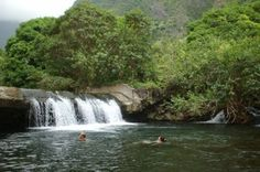 Swinging Bridge Hike Maui