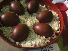The NATURAL color of eggs from the Black Copper Maran Chicken.