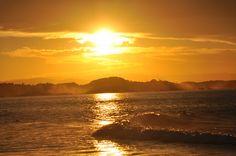 Gold Coast - R.N. Zweygartt