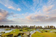 Fraaie Hollandse lucht boven de Waddenzee bij Moddergat, Friesland. Holland, Vineyard, Poster, Mountains, Beach, Prints, Nature, Painting, Travel