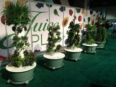 Captivating Gorgeous Tower Gardens By Juice Plus On Display At Our Conference In Long  Beach  For More Info Contact Www.shelbymeyer.towergarden.com Avail In Canu2026
