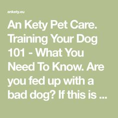 An Kety Pet Care. Training Your Dog 101 - What You Need To Know. Are you fed up with a bad dog? If this is the case, your dog could benefit from some training. Spending more time training can provide you with a pet who i