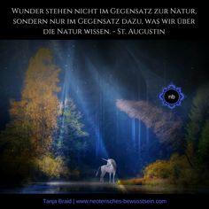 Wunder und Naturbetrachtung St. Augustin