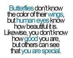 11 Best Butterfly Quotes For Weddings Images Butterflies