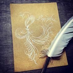 孔雀    #沾水筆 #illustration #draw #art #英文書法 #calligraphy #孔雀