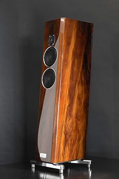 The Voice That Is - TIDAL Audio Speakers