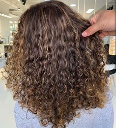 Curly, Long Hair Styles, Spiral, Beauty, Sweetie Belle, Mauritius, Long Hairstyle, Long Haircuts, Long Hair Cuts