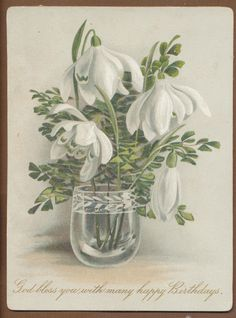 C8239 Victorian Birthday Card: Glass of Snowdrops | eBay