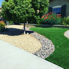 Artificial turf/Rock design