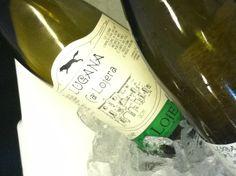 Lugana Ca Lojera from 2013 Food & Wine Experience http://www.moonlightwineco.com/lojera-lugana/