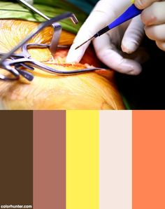 Medical/surgical Operative Photography Color Scheme