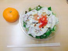 saladtogo -ミニサラダ+みかん【チケットレストラン 食事券】