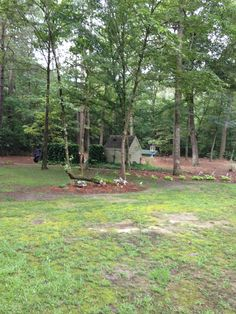 #PinMyDreamBackyard   Right area of grass (needs help) and natural area.  Pump house in this area.