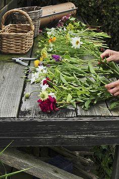 bloemen pluktuin