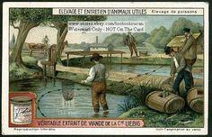 European Fish Farm At The Turn of The Century 1915 Card