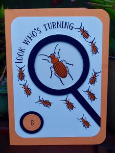 Stamping' Up! Beetles and Bugs Birthday Card - What Cathy Made