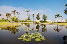 Bellos lagos para decorar tu entrono, sólo en Lomas de Angelópolis Cascatta.