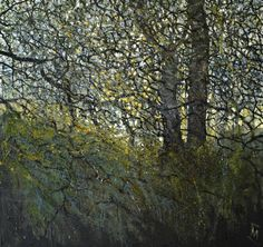 Colin Merrin 2016 Tracery. New Forest series. Oil on canvas