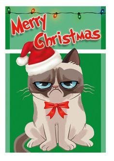 Merry Christmas & Happy Holidays E4db4df5061b31b216a97596554fc88b