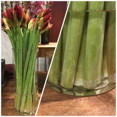 My Flower, Flowers, Vegetables, Vegetable Recipes, Royal Icing Flowers, Flower, Florals, Veggies, Floral