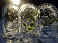 Ice and leaf land art. And here I have been freezing little plastic animals.this is so much more beautiful. Clear Winter, Winter Fun, Winter Ideas, Winter Time, Land Art, Ice Crafts, Snow Castle, Snow Sculptures, Ideas