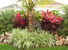 Tropical Landscapes Landscape Design Ideas, Pictures, Remodel and Decor