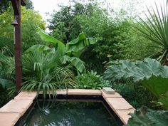 Pond | Blast from the past, year 2008 - before the build of the big koi pond ...